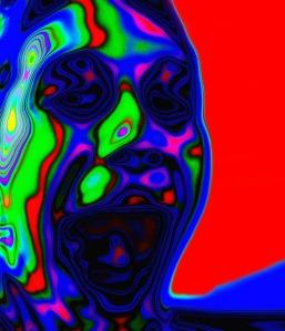 face-73401_640